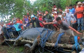 Lolong the Giant Crocodile